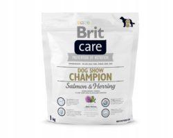 BRIT CARE ADULT DOG CHOW CHAMPION SALMON 1 KG