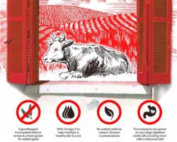 GRANDE PASTO GRAIN FREE RAGUSA BEEF 12 KG