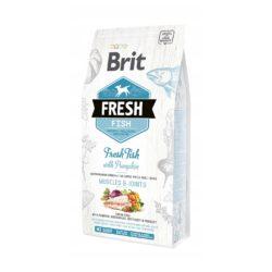 BRIT FRESH FISH WITH PUMPKIN ADULT LARGE 2,5 KG