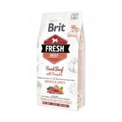 BRIT FRESH PUPPY LARGE BEEF PUMPKIN 2,5 KG